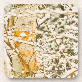 Snowy Birch Coasters