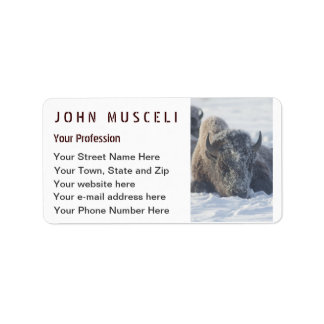Snowy Bison Customizable Business suite