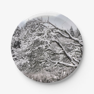 """Snowy branches 7"""" Paper Plate"""