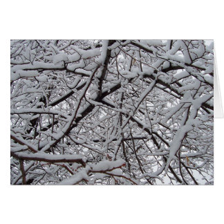 Snowy Branches Card