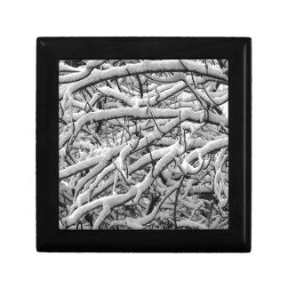 Snowy branches gift box