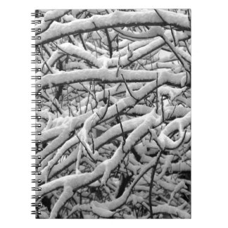 Snowy branches notebooks
