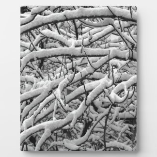 Snowy branches plaque
