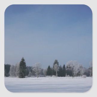 Snowy cold winter landscape 12 square sticker