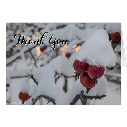Snowy Crab Apple Thank You Card