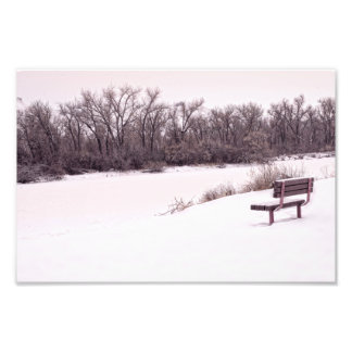 Snowy days photo print