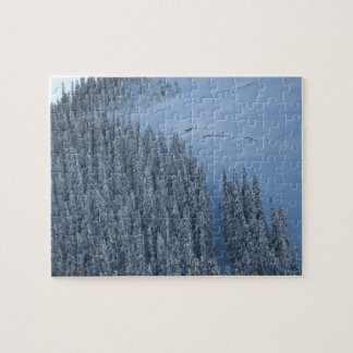 Snowy Days Puzzle