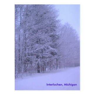 snowy dayz, Interlochen, Michigan Postcard