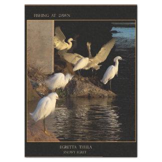 Snowy Egret Birds Wetlands Dawn Tissue Paper