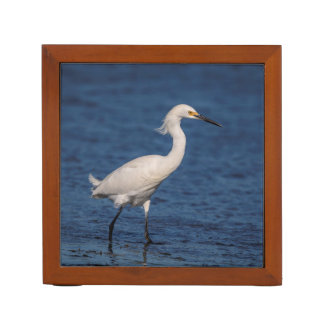 Snowy Egret on North Beach Desk Organizer