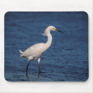 Snowy Egret on North Beach Mouse Pad