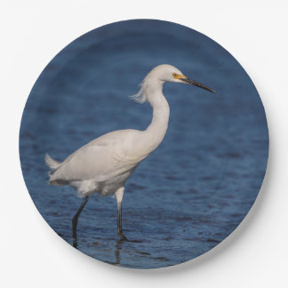 Snowy Egret on North Beach Paper Plate