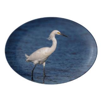 Snowy Egret on North Beach Porcelain Serving Platter