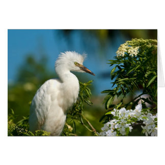Snowy Egret with Flowers Notecard Note Card