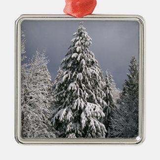 Snowy Evergreen Tree Christmas Ornament Winter