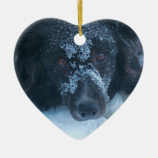 Snowy Faced Border Collie Dog Ornament