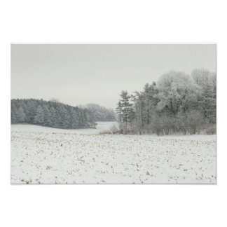 Snowy Field and Trees Print