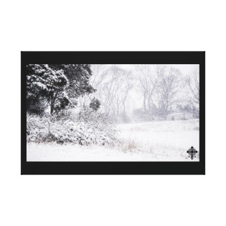 Snowy Field Canvas Print
