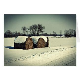Snowy field card