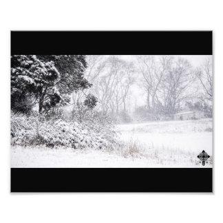 Snowy Field Photo Print