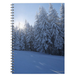 snowy forest in the mountain notebook