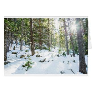Snowy Forest Wilderness Playground Card