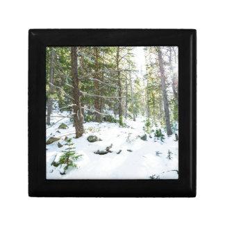 Snowy Forest Wilderness Playground Gift Box