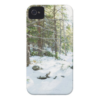 Snowy Forest Wilderness Playground iPhone 4 Case