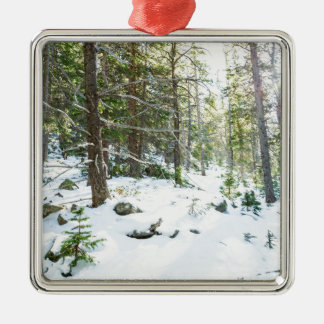Snowy Forest Wilderness Playground Metal Ornament