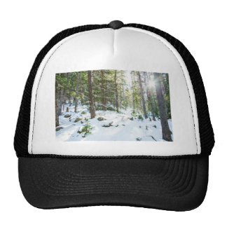 Snowy Forest Wilderness Playground Trucker Hat