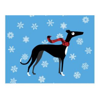 Snowy Hound Postcard