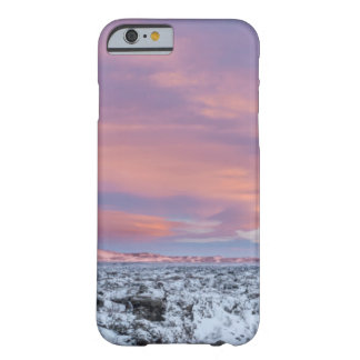 Snowy Lava field landscape, Iceland Barely There iPhone 6 Case