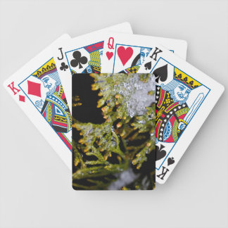 snowy leaves bicycle playing cards