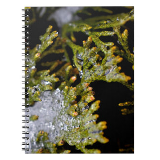 snowy leaves spiral notebook
