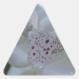 Snowy Mountain Digitalis Triangle Sticker