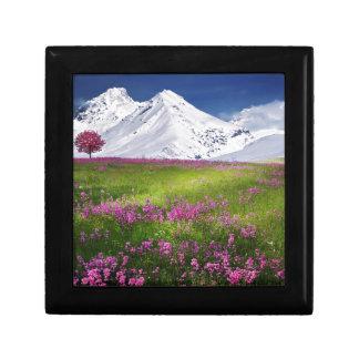 snowy mountains gift box