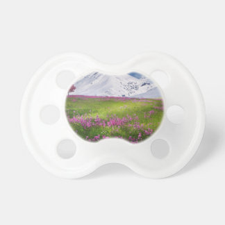 snowy mountains pacifier