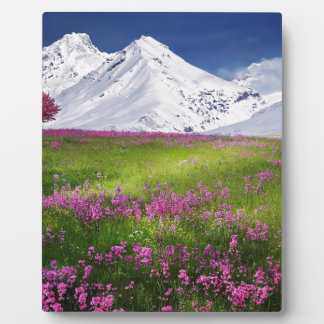 snowy mountains plaque