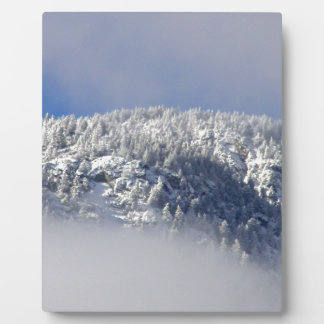 Snowy Mountaintop Trees Plaque