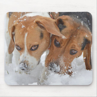 Snowy Noses Beagles Mouse Pad