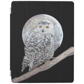 Snowy Owl and Moon iPad Cover