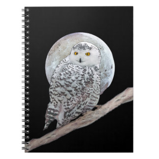 Snowy Owl and Moon Notebooks