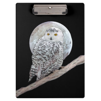 Snowy Owl and Moon Painting - Original Bird Art Clipboard