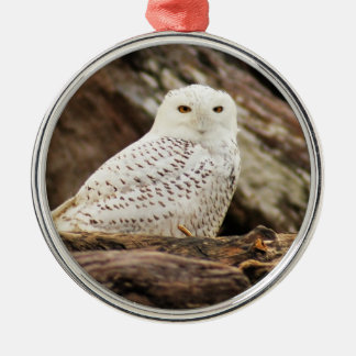 Snowy Owl at Christmas Silver-Colored Round Ornament