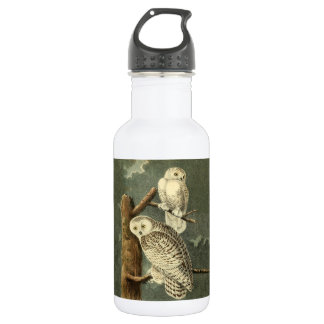 Snowy Owl Audubon Bird Art Illustration Artwork 532 Ml Water Bottle