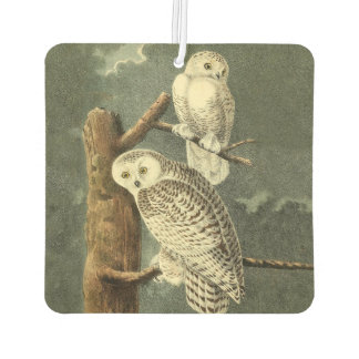 Snowy Owl Audubon Bird Art Illustration Artwork Air Freshener