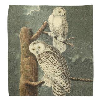 Snowy Owl Audubon Bird Art Illustration Artwork Bandana