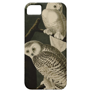 Snowy Owl Case For The iPhone 5