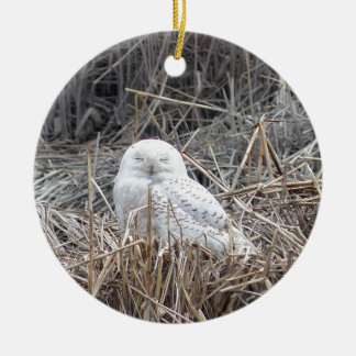 snowy owl ceramic ornament