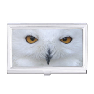 Snowy owl close up business card cases